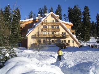 Ski apartment Spiežovec, Donovaly - Donovaly vacation rentals