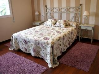 New luxury apartment - Pontevedra vacation rentals