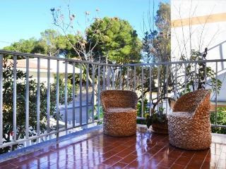 Apartment in Puerto de Alcudia, Mallorca 102654 - Puerto de Alcudia vacation rentals