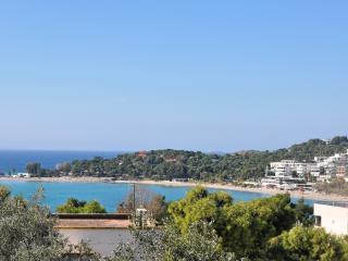 Executive seaview - Vouliagmeni vacation rentals