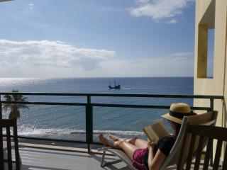 Nice Condo with Internet Access and Satellite Or Cable TV - Funchal vacation rentals