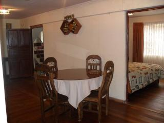 Beautiful apartment and extras - La Paz vacation rentals