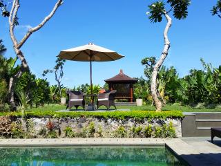 Devi's Place Ubud- perfectly private Villa Via - Ubud vacation rentals