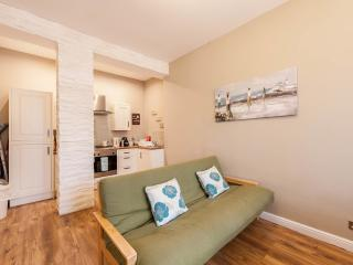 Stylish Apartmement near the Royal Mile and centre - Edinburgh vacation rentals