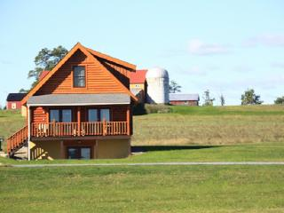 Otisco Deluxe Cabin by Seneca Lake at Cobtree - Geneva vacation rentals