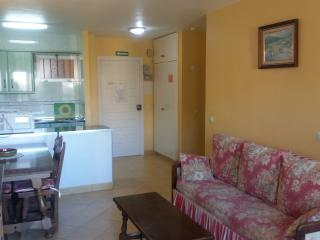 Minerva one bedroom apartment - Benalmadena vacation rentals
