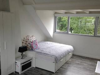 triple bed room 11 minutes from Amsterdam central - Diemen vacation rentals