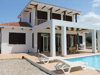 Charming Villa with Internet Access and A/C - Ayios Amvrosios vacation rentals