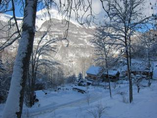 Chalet3Valleys self catered ski chalet - 3 Valleys - Saint-Martin-de-Belleville vacation rentals