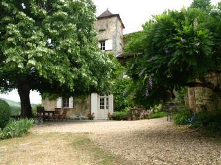 Le Gers - private farmhouse with wonderful views. - Alles-Sur-Dordogne vacation rentals