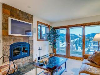 Charming Breckenridge 1 Bedroom Ski-in - TE1 - Iola vacation rentals