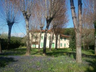 Comfortable Villa with Internet Access and Wireless Internet - Forte Dei Marmi vacation rentals