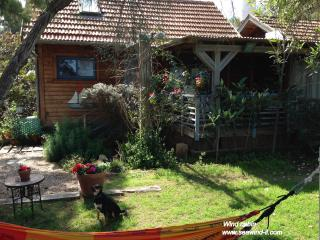 Sea Wind in Mikhmoret /  Wind cabin for 2-6 guests - Mikhmoret vacation rentals