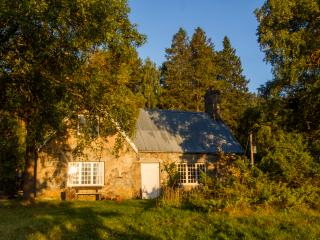 New, luxury cottage in the Scottish Highlands - Aviemore vacation rentals