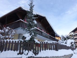 Spacious 8 bedroom Chalet in Nendaz - Nendaz vacation rentals
