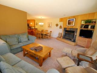 Ski Run Condominiums 404 - Completely remodeled, walk to slopes, ski area views! - Keystone vacation rentals