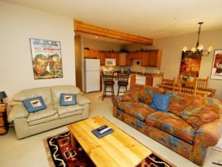 Trappers Crossing 8763 - Washer/dryer, jetted tub, on shuttle route, outdoor hot tub on site! - Keystone vacation rentals