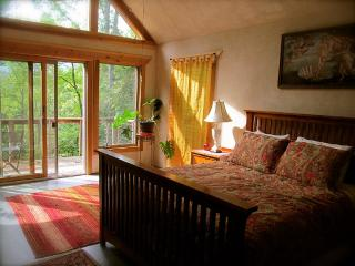 Drink in the Wild Mountain Air ~ Nearby Ashville - Asheville vacation rentals