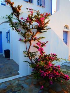 House 1 minute from the beach, Antiparos - Agios Georgios vacation rentals