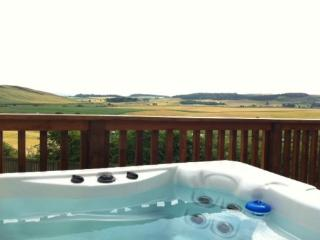 Beautiful lodges with hot tubs - 95800 - Cupar vacation rentals