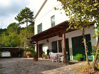 Comfortable Condo with Internet Access and Satellite Or Cable TV - Lucca vacation rentals
