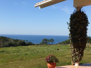 TRANQUILIDADE À BEIRA MAR - Sintra vacation rentals