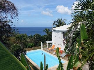 Comfortable Villa with Deck and Internet Access - Deshaies vacation rentals