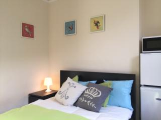Dublin City Centre Studio with WIFI - Dublin vacation rentals