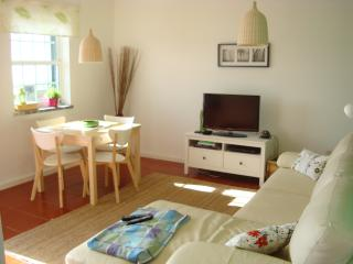 Cozy 1 bedroom Vacation Rental in Lajes das Flores - Lajes das Flores vacation rentals