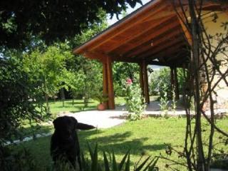 Villa between Terracina and San Felice Circeo - Terracina vacation rentals