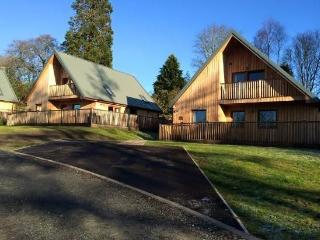 Lord Galloway 35 - Beautiful lodges situated on Scotland's magnificent West - New Galloway vacation rentals