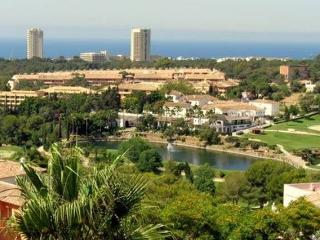 Nice Penthouse with Television and Microwave - Elviria vacation rentals