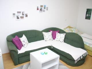 Nice Condo with Television and Fireplace - Sarajevo vacation rentals