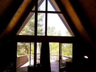 Moonstone Cabin with Lake Passes! - Lake Arrowhead vacation rentals