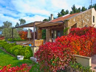 Nice 3 bedroom House in Sani - Sani vacation rentals