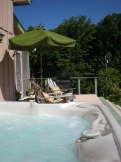 Honeysuckle Cottage on 145 acres  Hot Tub Mtn View - Grandview vacation rentals