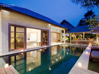 Amazing private villa in Kuta - Kuta vacation rentals