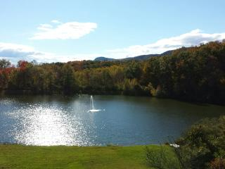 Lake! Pool! Hot Tub! Barbecue! Volley Ball! Boat! - New Paltz vacation rentals