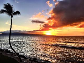 Direct Oceanfront! Free Sunsets! Spring Specials! - Lahaina vacation rentals