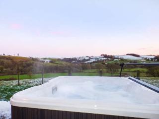 TYNDDOL BUNGALOW, detached, hot tub, woodburner, fantastic views, Llanbadarn-Fynydd, Llanbister, Ref 912330 - Llanbister vacation rentals