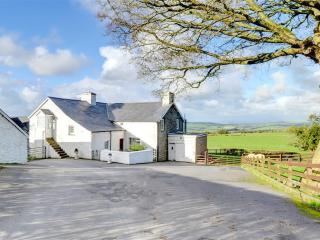 2 bedroom Cottage with Washing Machine in Capel Bangor - Capel Bangor vacation rentals