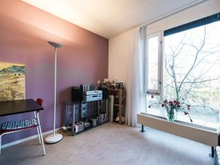 Spacious house near centre with roofgarden - Amsterdam vacation rentals