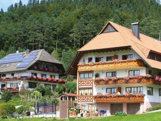 Vacation Apartment in Elzach (# 6791) ~ RA63492 - Schramberg vacation rentals