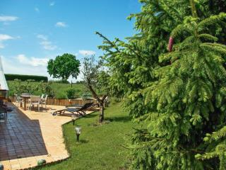Spacious house with terrace and garden - Giffaumont-Champaubert vacation rentals