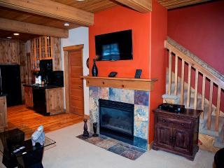 2 BR Deer Valley Condo (Sleep 4) #2 - Park City vacation rentals