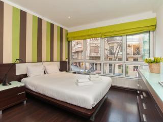 4 Bedrooms Apartment - Casa Rosellon - Barcelona vacation rentals