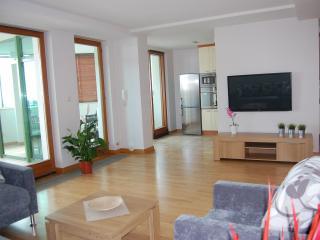 Apartament Niemcewicza - Warsaw vacation rentals