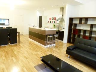 Lovely 2 Bedroom Glasgow Central Apartment - Glasgow vacation rentals