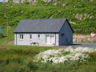 Nice House with Internet Access and A/C - Fionnphort vacation rentals