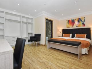 Three Bedroom Apartment (2 ensuite rooms) - London vacation rentals